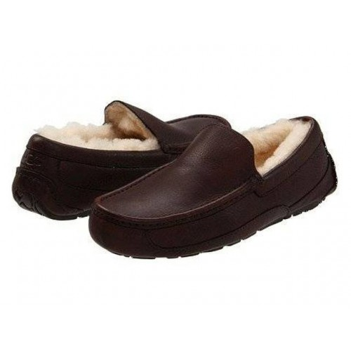Купить UGG MENS Ascot Leather Brown в Украине