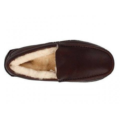 UGG MENS Ascot Leather Brown