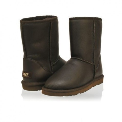 UGG Classic Short Leather brown man