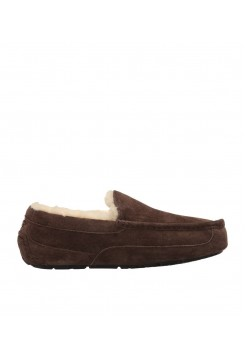 UGG Ascot Chocolate Men