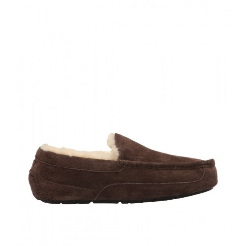Купить UGG Ascot Chocolate Men в Украине